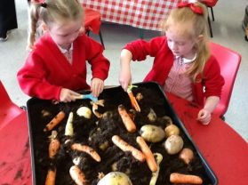 P1 Make Chips in School!