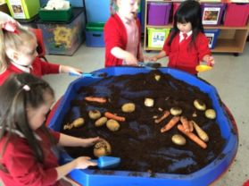 Primary One Make Chips